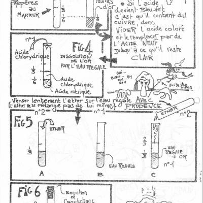 Lpp n 4 p4