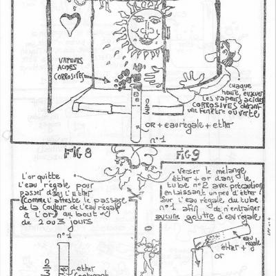 Lpp n 4 p5